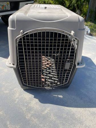 Photo XLG DOG KENNEL  CRATE (40LX27H) .....CAN DROP OFF LOCALLY - $80 (PORT CHARLOTTE - PUNTA GORDA)