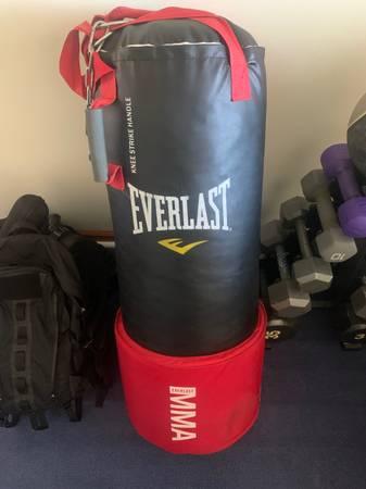 Photo Everlast Heavy Bag - $50 (Ruther Glen)