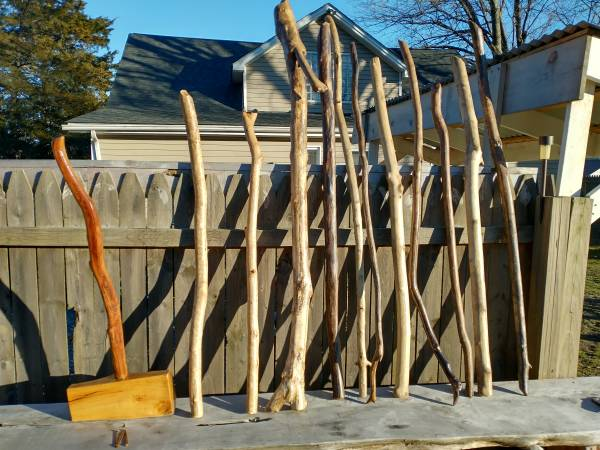 Photo Walking sticks-canes - $20 (Fredericksburg va)