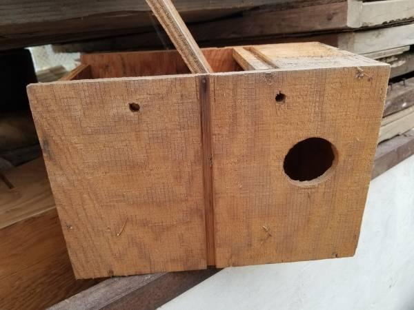 Photo Bird nest boxes for small birds. Finches, love birds, parakeets - $4 (Fresno)