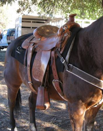 Photo Circle Y Saddle - $450 (Sonora)