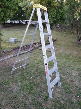 Photo 7 ft. Aluminum Professional Step Ladder - $60 (grand rapids)