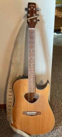 Photo Arbor Acoustic Electric Guitar wcase - $400 (Suamico)