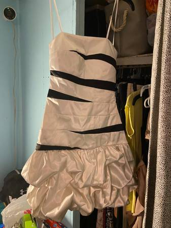 Photo Formal dresses - $80 (Williamston)