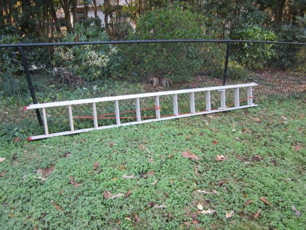 Photo Ladder, 24 foot extension - $95 (Clemson)