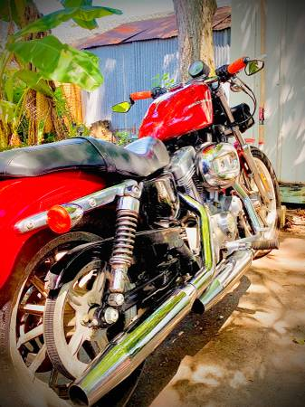 Photo 2005 Harley Davidson XL883 Low Sportster - $3,650 (New Orleans)