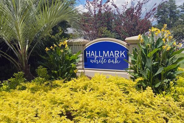 Photo CAN YOU SAY RARE 3BDR2BTH Below Market Price (102 Haigler Blvd Bluffton, SC)