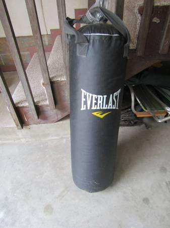 Photo Everlast 70-Pound MMA Heavy Bag - $75 (Moss Creek)