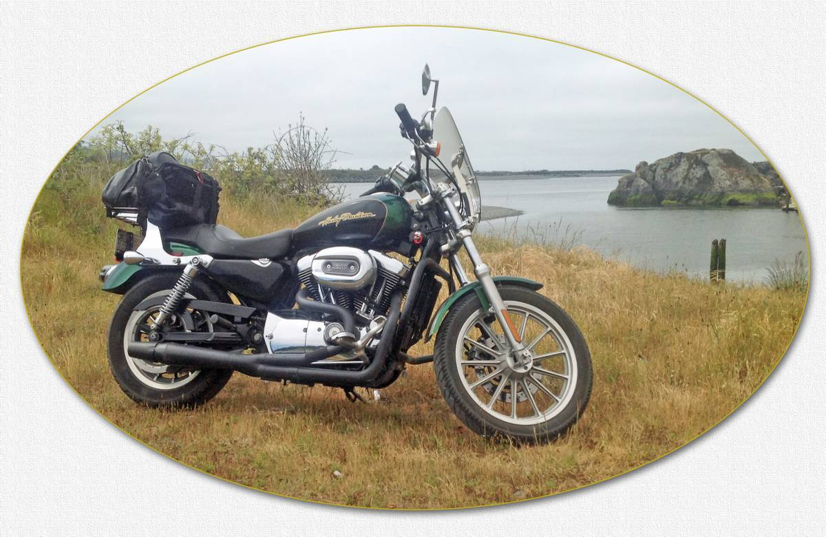 Photo 2006 Harley-Davidson SPORTSTER 1200 CUSTOM $4650117.65117.65