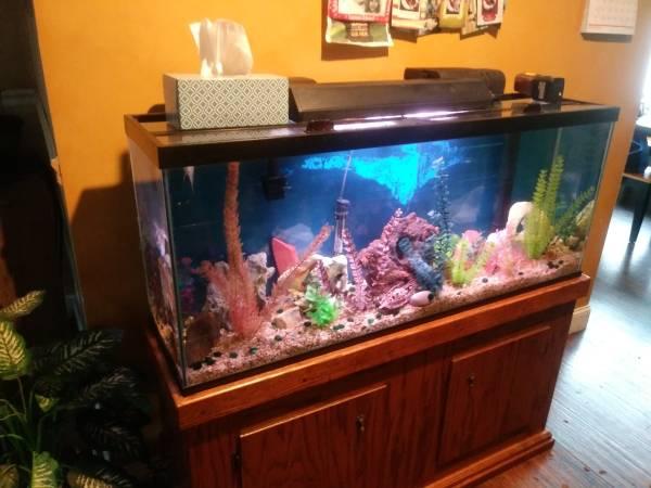 Photo 55 gallon Aquarium - $175 (huntsville)