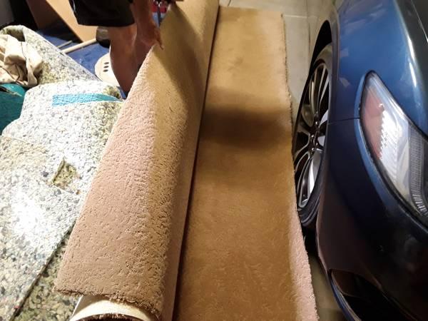 Photo StainMaster Carpet wPad - Highend Plush - $40 (Wellton)