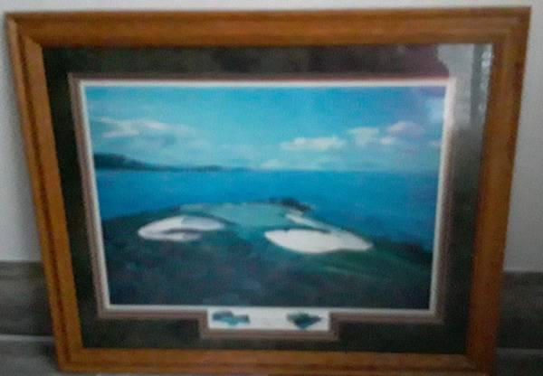 Photo dream course hole 7 Pebble, 1994, signed Elizabeth Peper print - $79 (Beverly Morgan park Chicago)