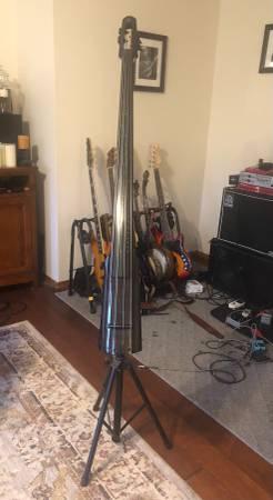 Photo NS WAV 4 Upright Bass - $800 (Joplin)