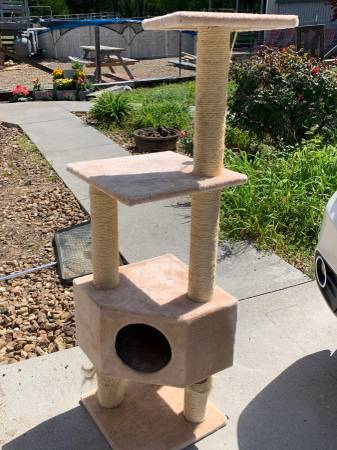 Photo Cat tower  Cat tree - $45 (Seymour)