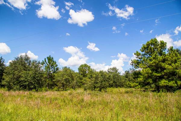 Photo 10 Acres Vacant Land - Columbia County Possible WellSept - Financing (Fort White)