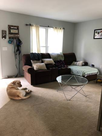 Photo Looking for a female roommate (Lancaster)