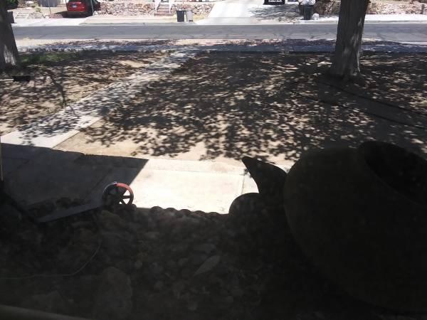 Photo landscape rock wanted (Boulder City)