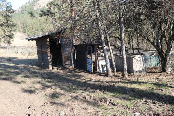 Photo free chicken house and fence take down and clean up (Kamiah)