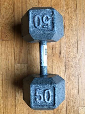 Photo 50 lb Arm Curl Weight - $200