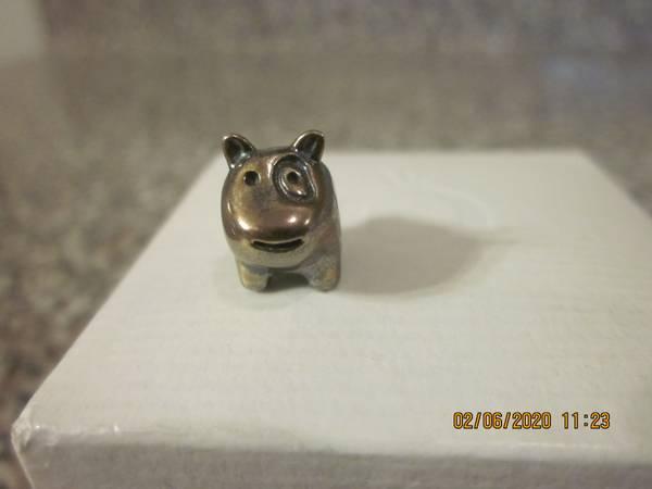 Photo Dog charm Pandora charm - $20 (Farmingville, NY)