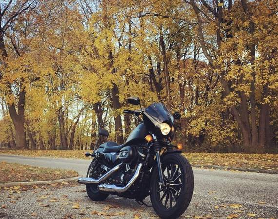 Photo For sale - 2014 Harley Davidson iron 883 sportster - $6,800
