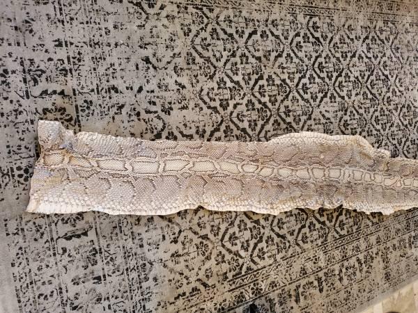 Photo 13 foot python skin - $40 (MontebelloArcadia)