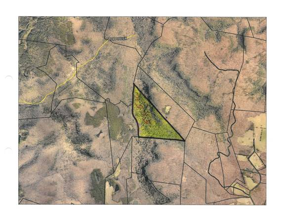 Photo 55.5 Surveyed Acres that would make a great piece of huntingrecreatio (Lake Cumberland)