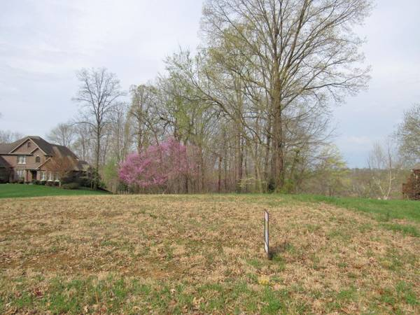 Photo REDUCED 10,000. Really nice wooded and restricted building lot in Lake (Lake Cumberland)