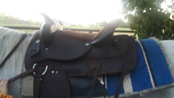 Photo Brand new saddle for sale - $150 (Fulton)