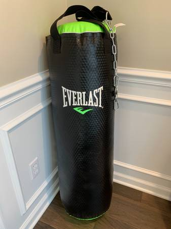 Photo Everlast Heavy Punching Bag 70-Lb - $85 (Chesterfield, MO)
