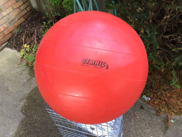 Photo Gymnic red 16 inflatable rubber ball great for Excercise - $15 (Madison)
