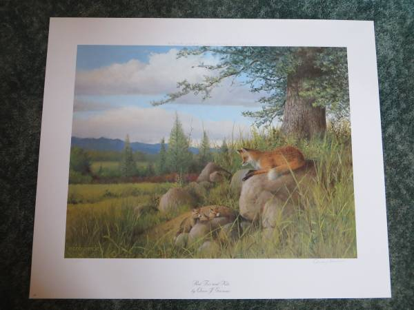 Photo Red Fox and Kits by Owen Gromme Print Signed  Numbered - $100