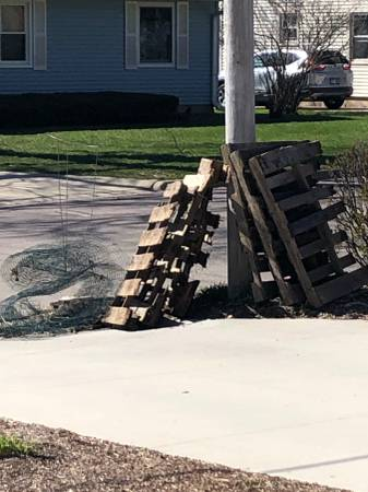 Photo pallets and metal mesh fencing - Free on curb (Monona, WI)