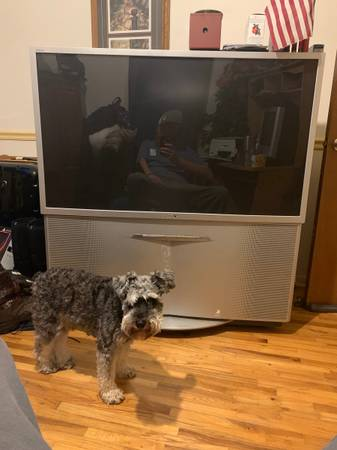 Photo Sony 51 inch tv - $10 (Svea)
