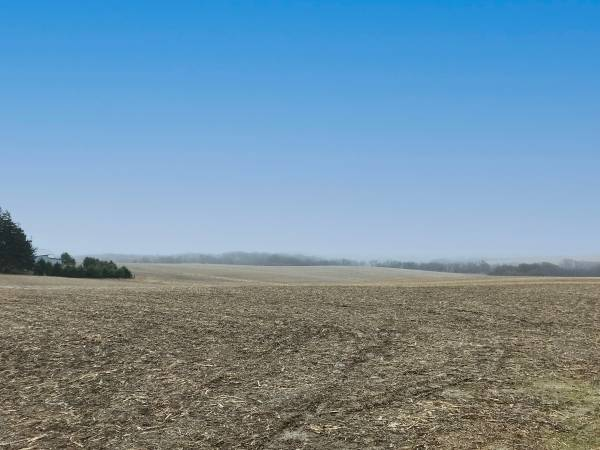 Photo 245.84- Acres Fillmore County, MN (Mabel)