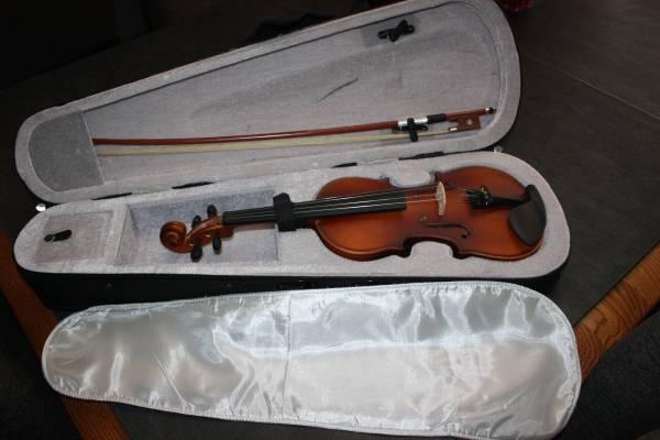 Photo Violin 14 Mendini by Cecilio - $80 (Phoenix)