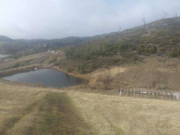 Photo Land for Lease 20k (21 acres) (Lower Lake)