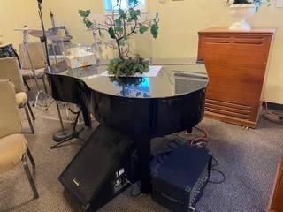Photo Suzuki Digital Piano - $500 (Sacramento)