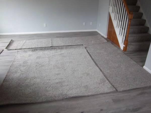 Photo Carpet Remnant - $15 (New Berlin)