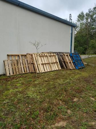 Photo Free wood shipping pallets (Milton)