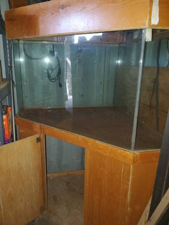 Photo 100 gal aquarium with top and stand - $100 (KINGMAN)