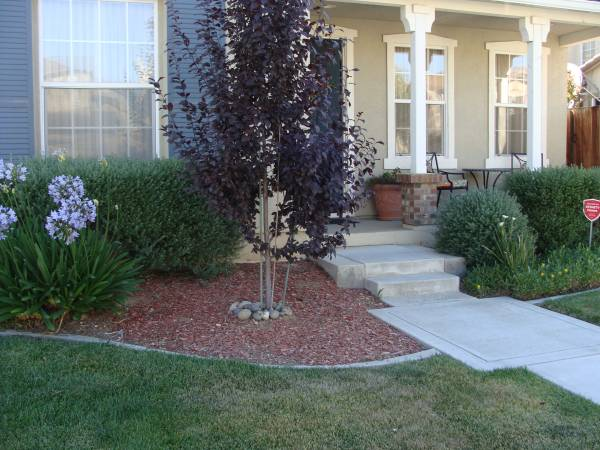 Photo Immediate Availability - Call Now 6 month minimum stay Rent one of ou (Salinas)