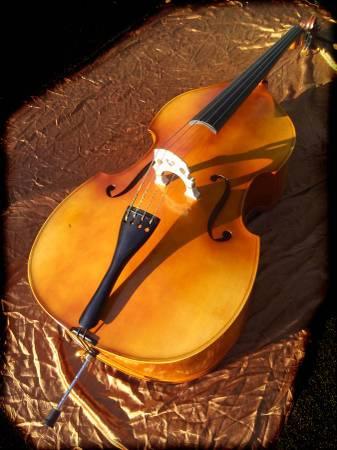 Photo (57 OFF) Bellafina Prodigy Double Bass 34 - $853