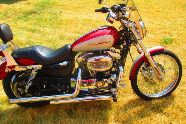 Photo 2004 HARLEY XL 1200 CUSTOM - $6,500 (STURGIS SD)