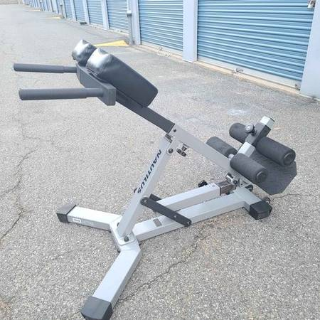 Photo nautilus hyper extension bench - $350 (DOVER)