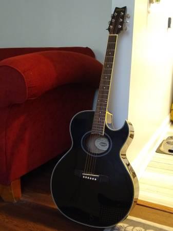 Photo Washburn Acoustic Electric Guitar - $250