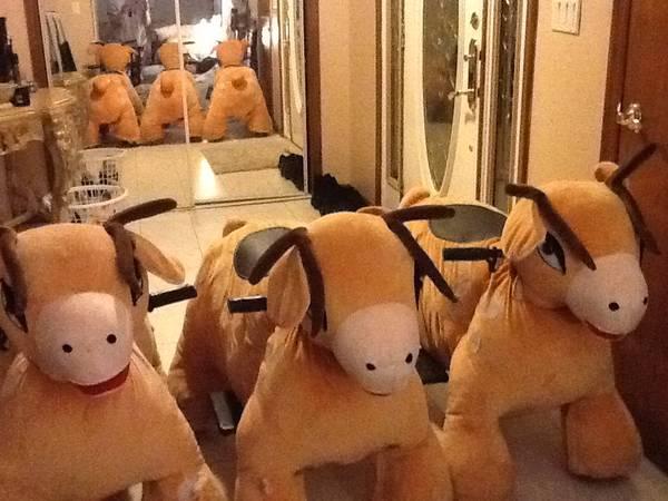 Photo Kiddie reindeer ride - $350
