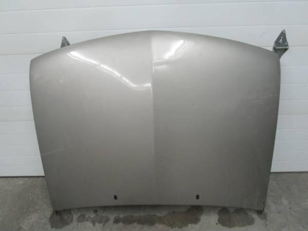 Photo 1994-2004 Chevy S10 hood - $100 (Hayward)