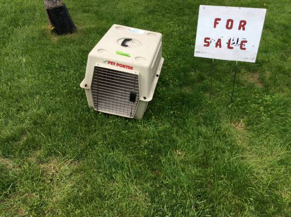 Photo Pet Porter crate - $20 (Wabeno Crandon)