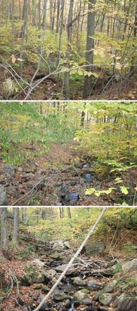 Photo 2.4ac Washington ct residential lot Rent to own, seller financing, park rv (New Preston marble Dale)